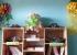 Lần đầu tiên huyện miền núi Nam Trà My đưa thư viện vào lớp học